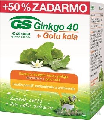 GS Ginkgo 40 + Gotu kola výživový doplnok, 60ks - GS Ginkgo 40 + Gotu kola 40+20 tabliet
