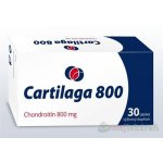 Cartilaga 800