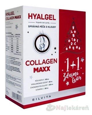 HYALGEL COLLAGEN MAXX, Vianočné balenie - Hyalgel Collagen MAXX vánoční balení 2017 2 x 500 ml