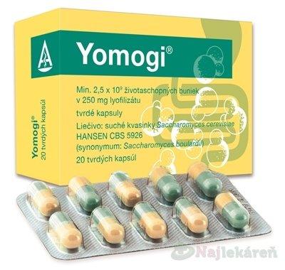 Yomogi cps.dur.20 x 250 mg