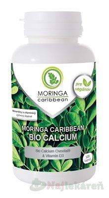 MORINGA Moringa Caribbean BIO CALCIUM, 120ks